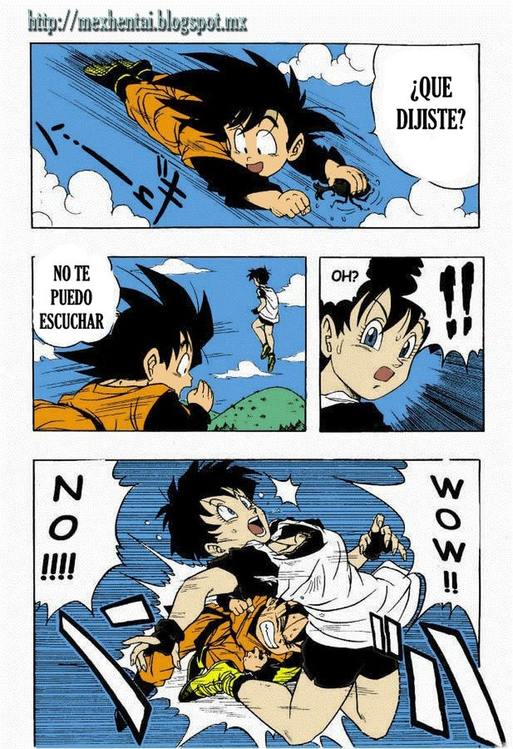 dragon-ball-h-color 3