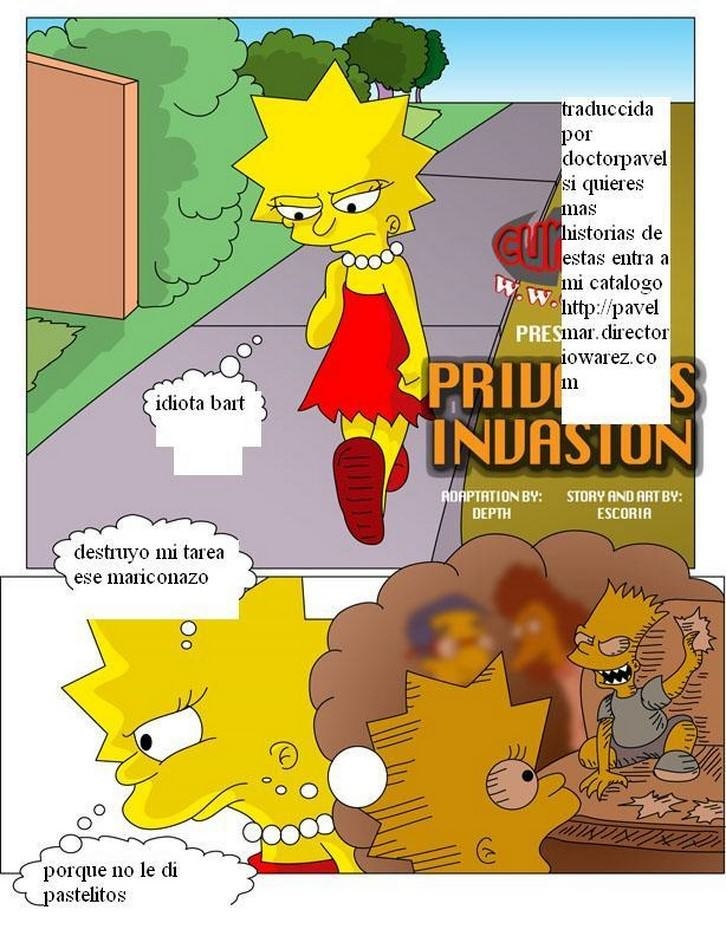 privacys-invasion-simpsons 2
